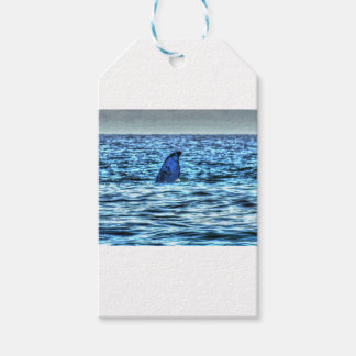HUMPBACK WHALE TAIL QUEENSLAND AUSTRALIA ART GIFT TAGS
