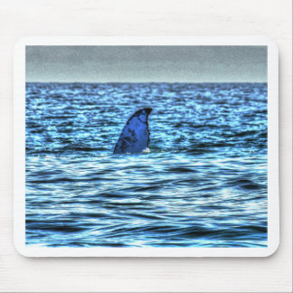 HUMPBACK WHALE TAIL QUEENSLAND AUSTRALIA ART MOUSE PAD