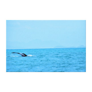 HUMPBACK WHALE TAIL QUEENSLAND AUSTRALIA CANVAS PRINT