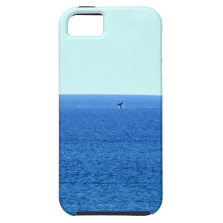 HUMPBACK WHALE TAIL QUEENSLAND AUSTRALIA iPhone 5 CASE