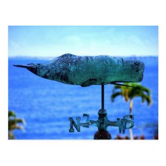 Humpback Whale Weather Vane Postcard