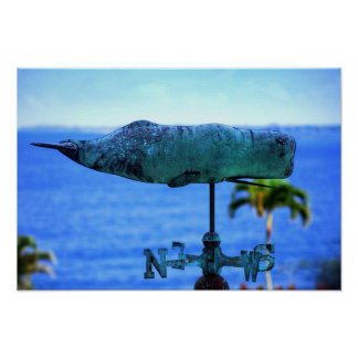 Humpback Whale Weather Vane Poster