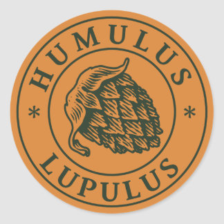 Humulus lupulus hop for craft beer round sticker