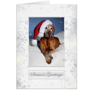 Hungarian Vizsla Christmas Card 007