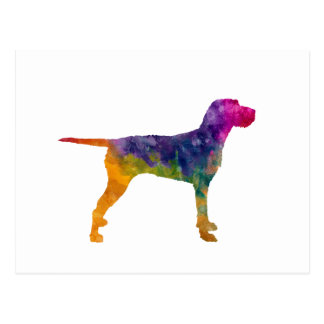 Hungarian Wirehaired Vizsla in watercolor Postcard