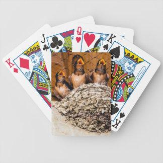 Hungry Baby Swallows - Antelope Island - Utah Bicycle Playing Cards