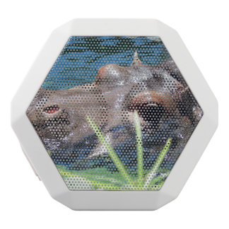 Hungry Hippo White Boombot Rex Bluetooth Speaker