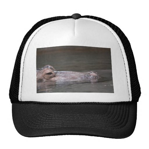 Hungry Hippo Hat