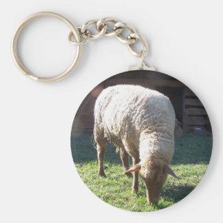 hungry sheep key ring