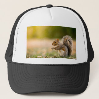 Hungry Squirrel Trucker Hat