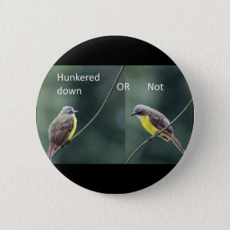 hunkered down or not bird 6 cm round badge