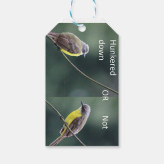hunkered down or not bird gift tags