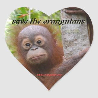 Hunt, a new orangutan orphan heart sticker