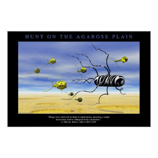 Hunt on the Agarose Plain Poster