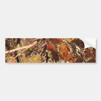 Hunter's Fall Nature Camouflage Painting Decor Bumper Sticker