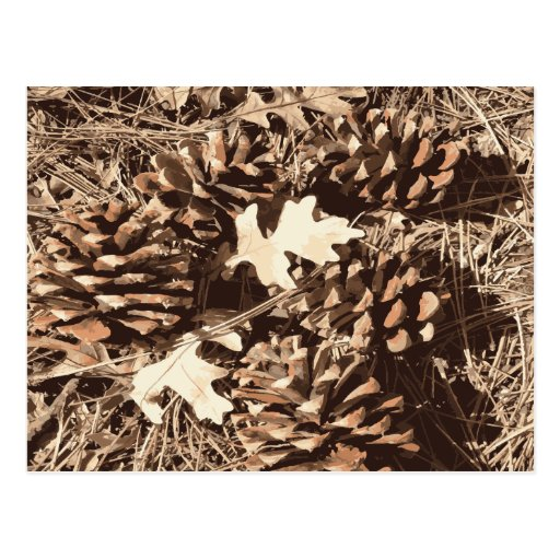 Hunting Camo Camouflage Gifts for Hunters Postcards