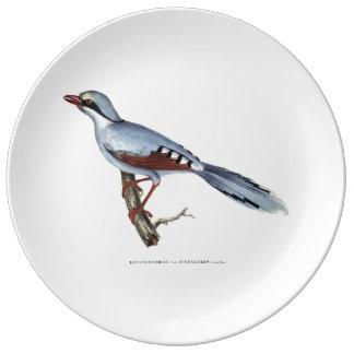 Hunting Crow Plate