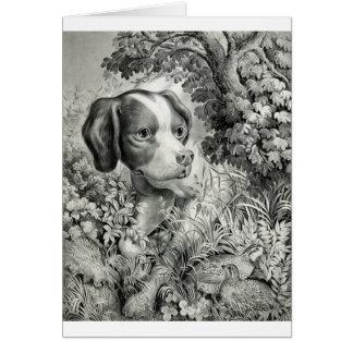 Hunting Dog and Quail, Card