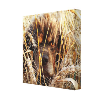 Hunting Dog Canvas Canvas Print