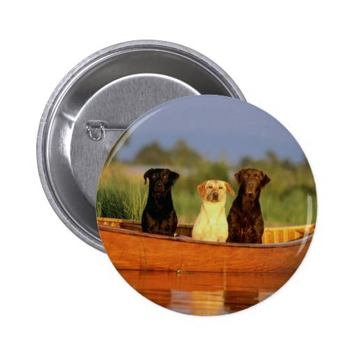 Hunting Dogs Buttons