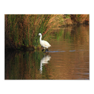Hunting Egret Card