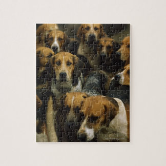 Hunting foxhounds, Galway Blazers, Ireland Jigsaw Puzzle