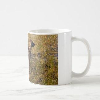 Hunting Plott Hound Dog in Marsh Coffee Mug
