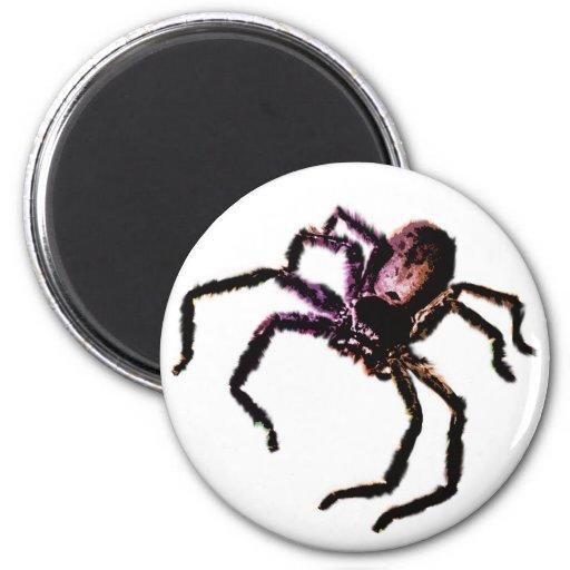 Huntsman Spider Refrigerator Magnets