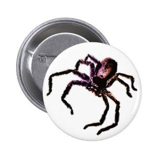 Huntsman Spider Pinback Buttons