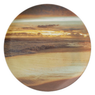 Hurricane Hermine Sunset Party Plate