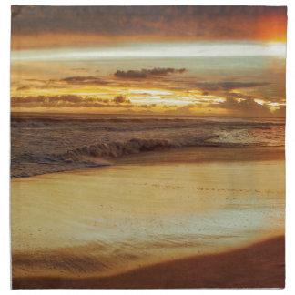 Hurricane Hermine Sunset Printed Napkin