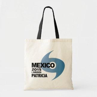 Hurricane Patricia Survivor Mexico 2015