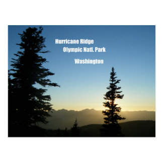 Hurricane Ridge, Olympic National Park, WA Postcard