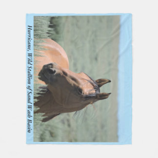 Hurricane, Wild Stallion of Sand Wash Basin Fleece Blanket