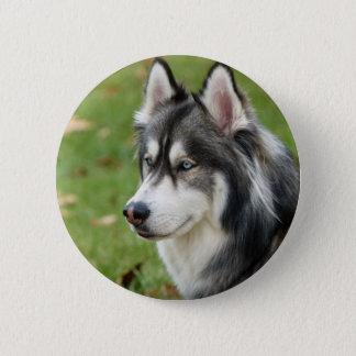 Husky 6 Cm Round Badge