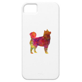 Husky Alaskan in watercolor iPhone 5 Cases