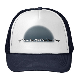 Husky Caps Siberian Husky Sled Dog Team Hats