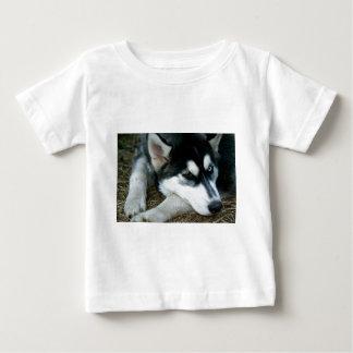 Husky Dog Baby T-Shirt