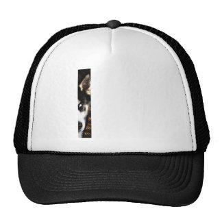Husky Dog Blue Eye Border Trucker Hats