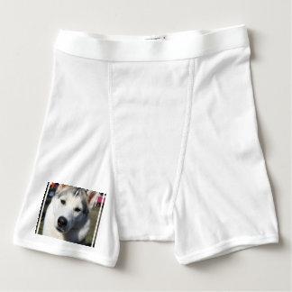 Husky Dog Boxer Briefs