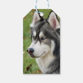 Husky Gift Tags