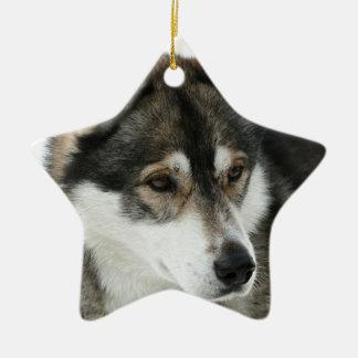 Husky Pet Dog Christmas Ornaments