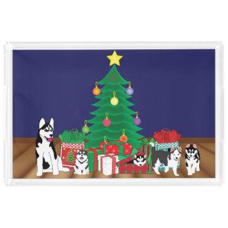 Husky Playing Under the Christmas Tree