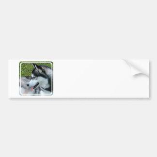 Husky Profile  Bumper Sticker