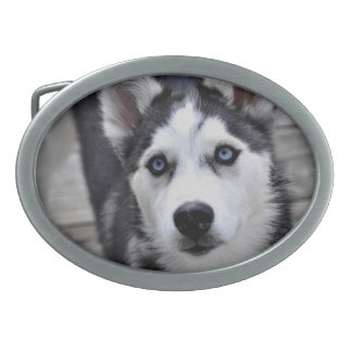 Husky Puppy Buckle Belt Buckle