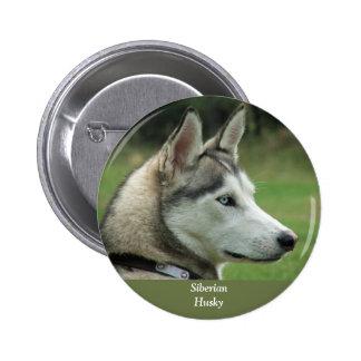 Husky Siberian dog beautiful photo button pin