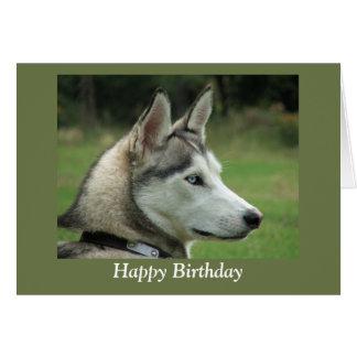 Husky Siberian dog photo happy birthday card