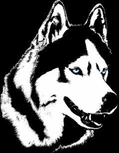 Siberian Husky Dog Stickers Zazzle Au