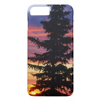 HUSTON PARK WILDERNESS, WYOMING. USA. Spruce iPhone 7 Plus Case