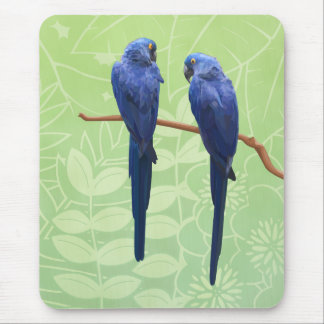Hyacinth Macaw Duo Mouse Pad